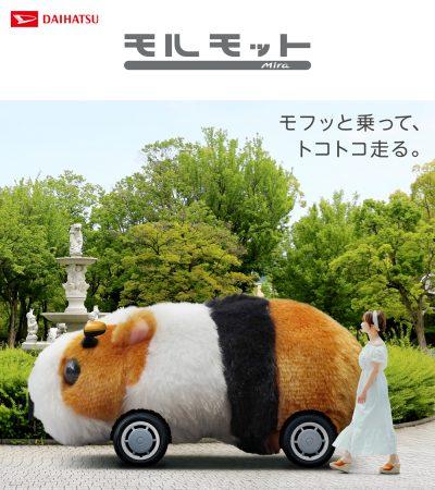 ダイハツ専門店 D-フォーラム|長岡市 新車|スタッフブログ|ミラモルモット